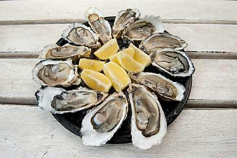 Taste oysters at the Boston Seafood Festival
