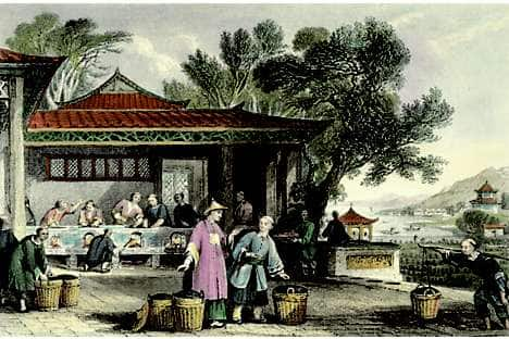An engraving depicting the preparation of tea leaves in 1843