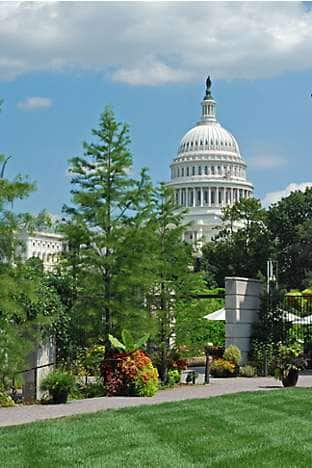 the Capitol Building seen from the US Botanic Garden