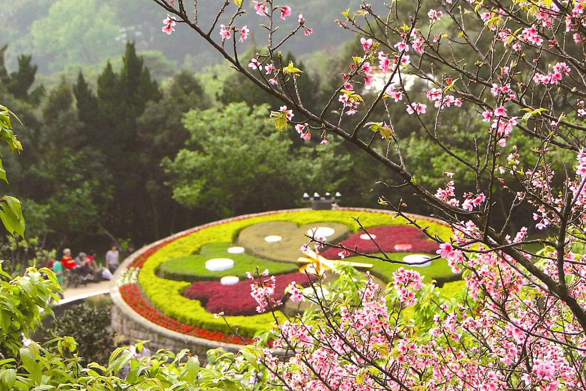 A floral clock, part of the annual Flower Festival at Yangmingshan National Park