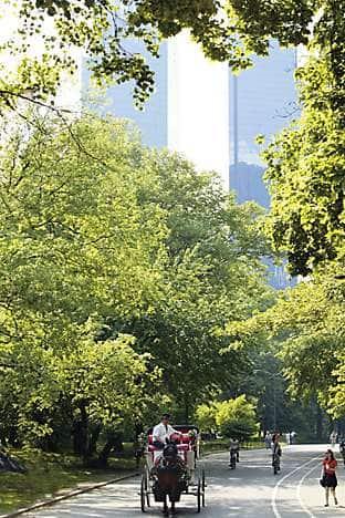 Central Park, near Mandarin Oriental, New York