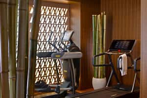 Fitness & Wellness Centre