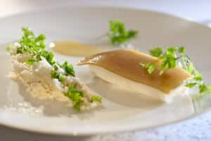 Turbot, Cedrat lemon, oven roasted lemon juice