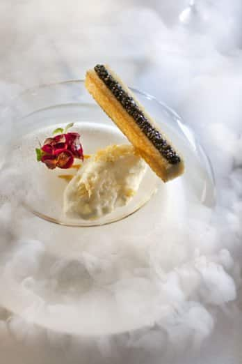 Semi-pris de Coquillages, Caviar