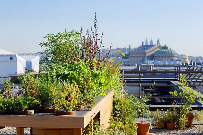 sustainability mandarin oriental hotel paris. Black Bedroom Furniture Sets. Home Design Ideas