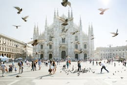 Birds flutter in the air in front of Milan's imposing white-facaded Duomo
