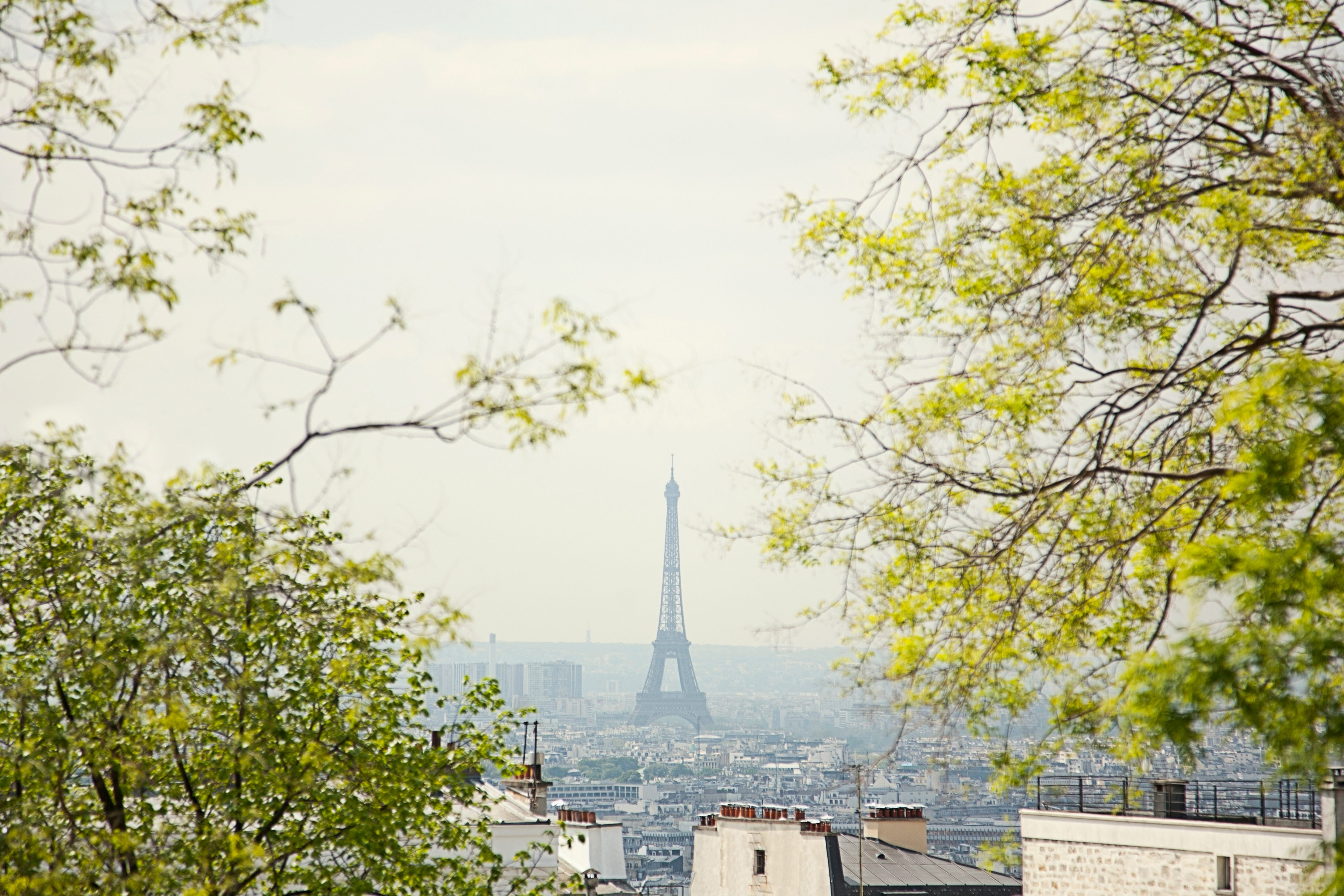 View from afar of the Paris skyline with the Eiffel Tower in the distance