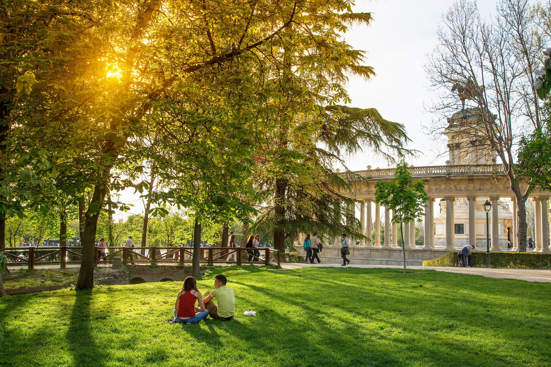 Leafy El Retiro Park, Madrid
