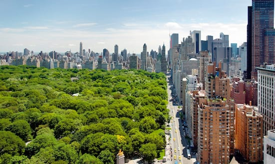 View of Central Park from Columbus Circle