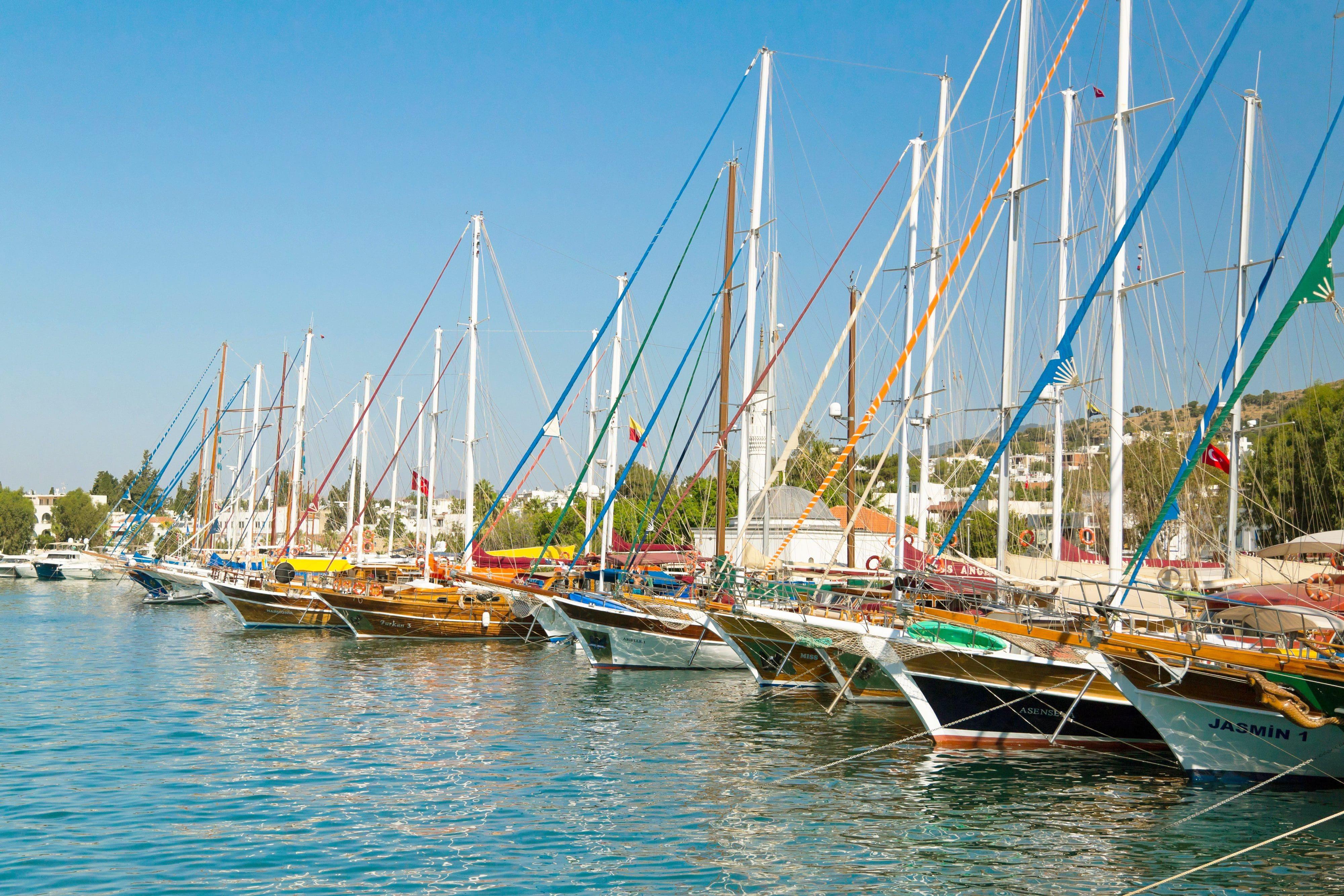 The mega yachts