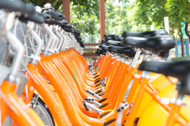 Orange bikes lined up in Taipei