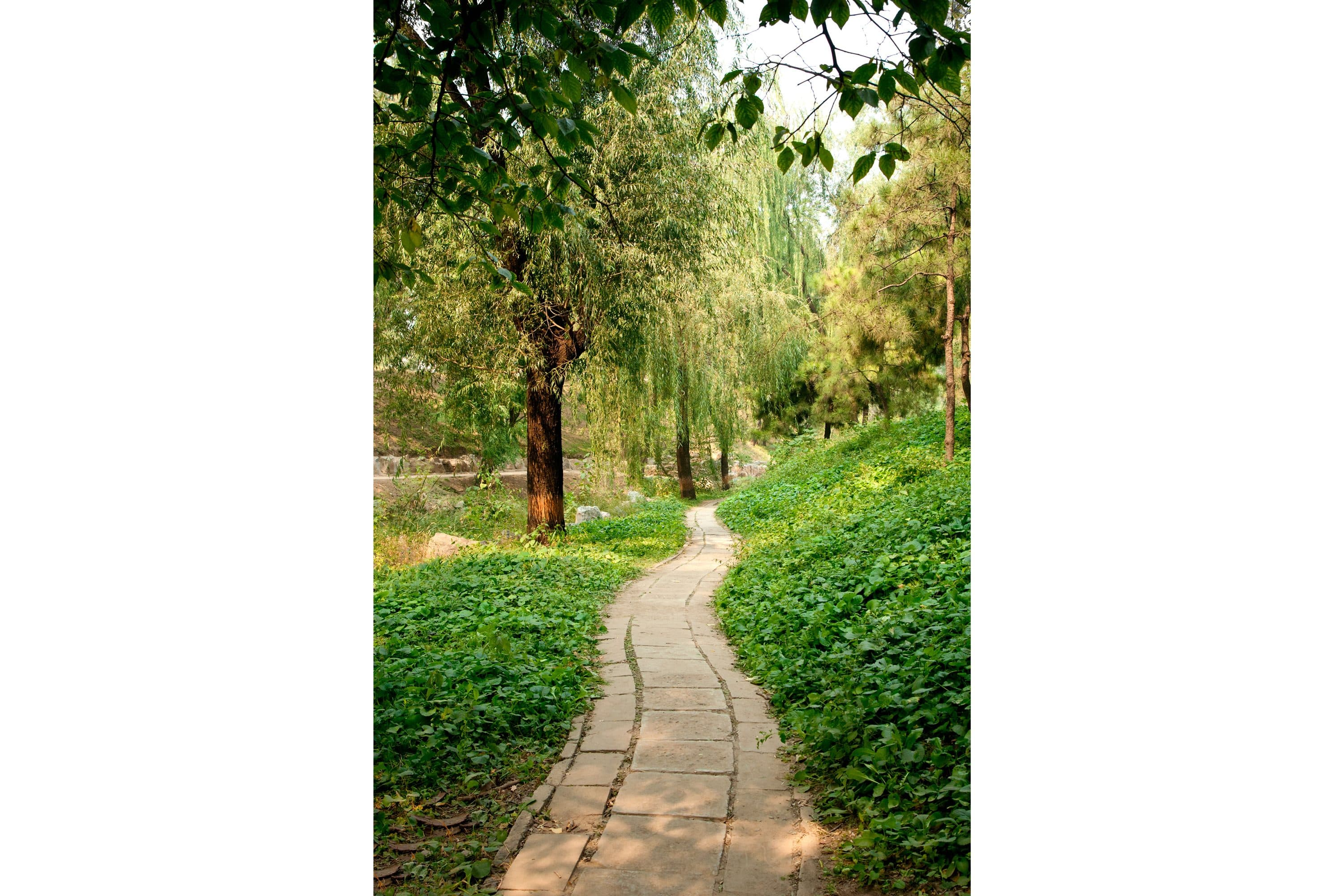 Garden pathway at Old Summer Palace, Beijing