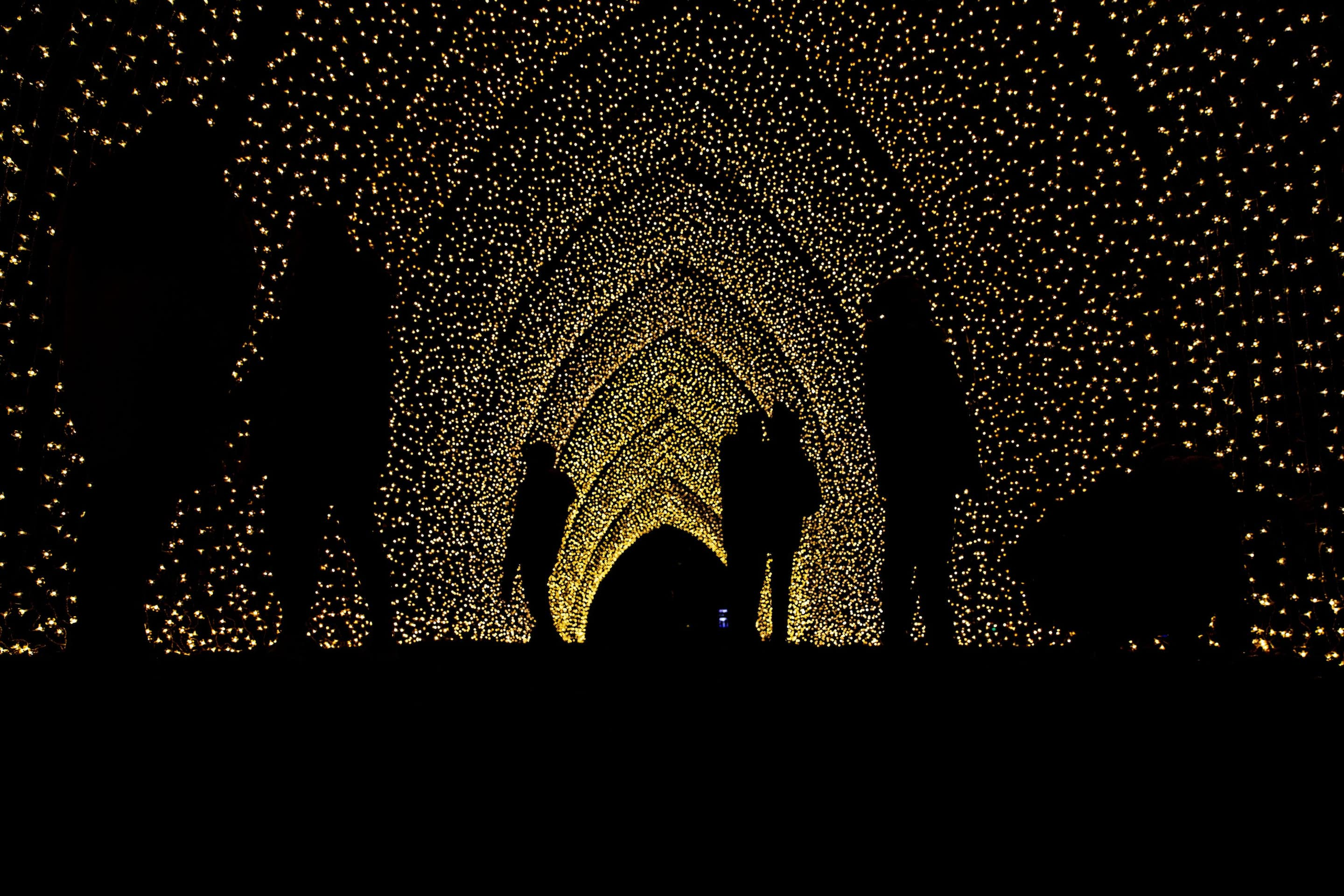 People standing under a canopy of fairy lights