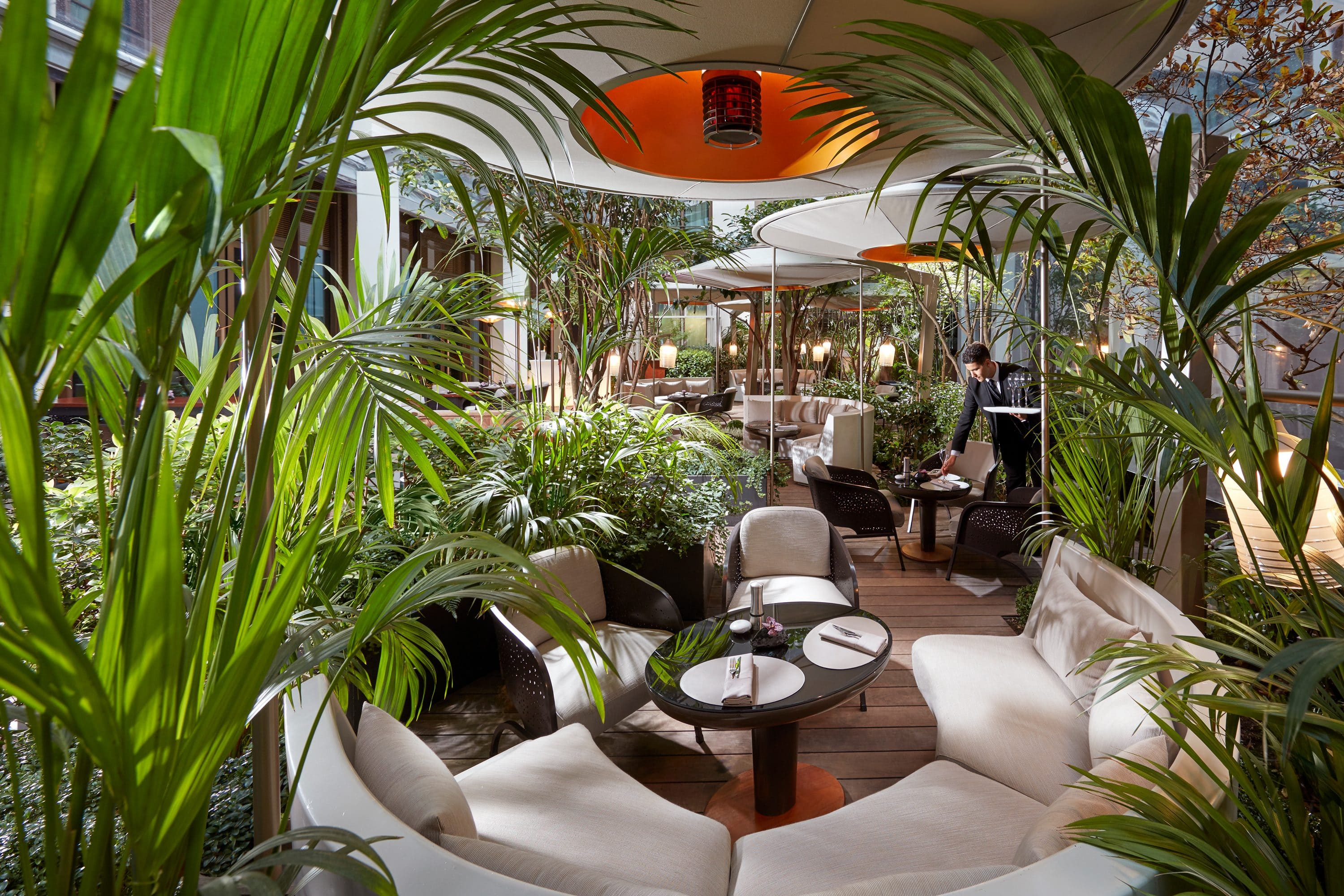 Palms and seats in the courtyard garden of Camelia at Mandarin Oriental, Paris