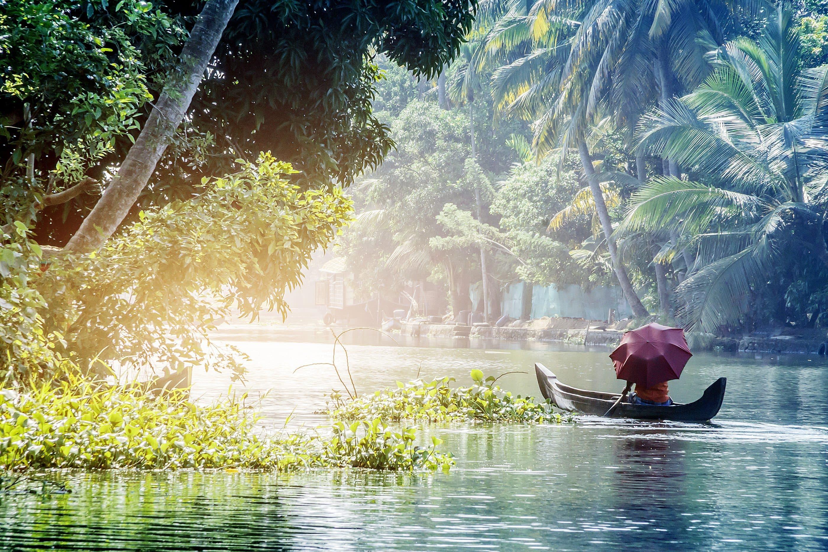 Boat travels down Kerala waterway