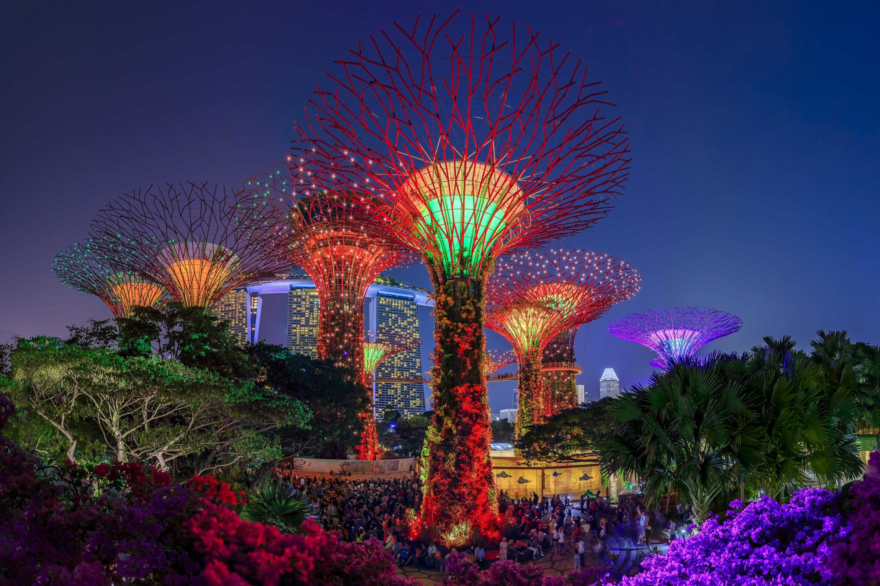 Illuminated 'supertrees' by night at Gardens by the Bay, Singapore