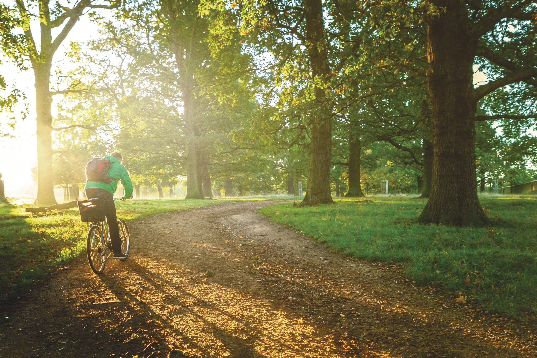 Cyclist in Richmond Park, London
