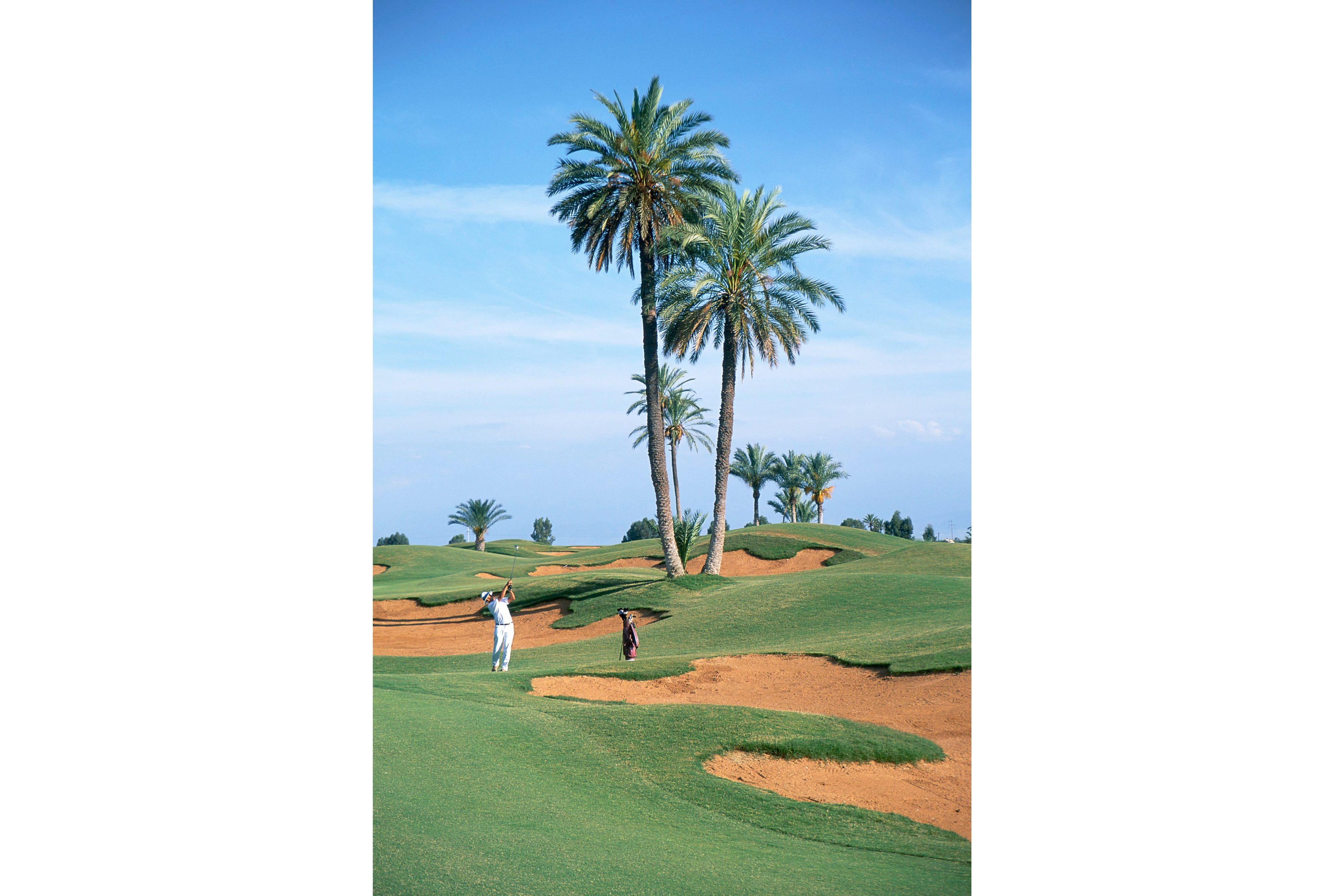 Palm trees and bunkers at Amelkis, Marrakech
