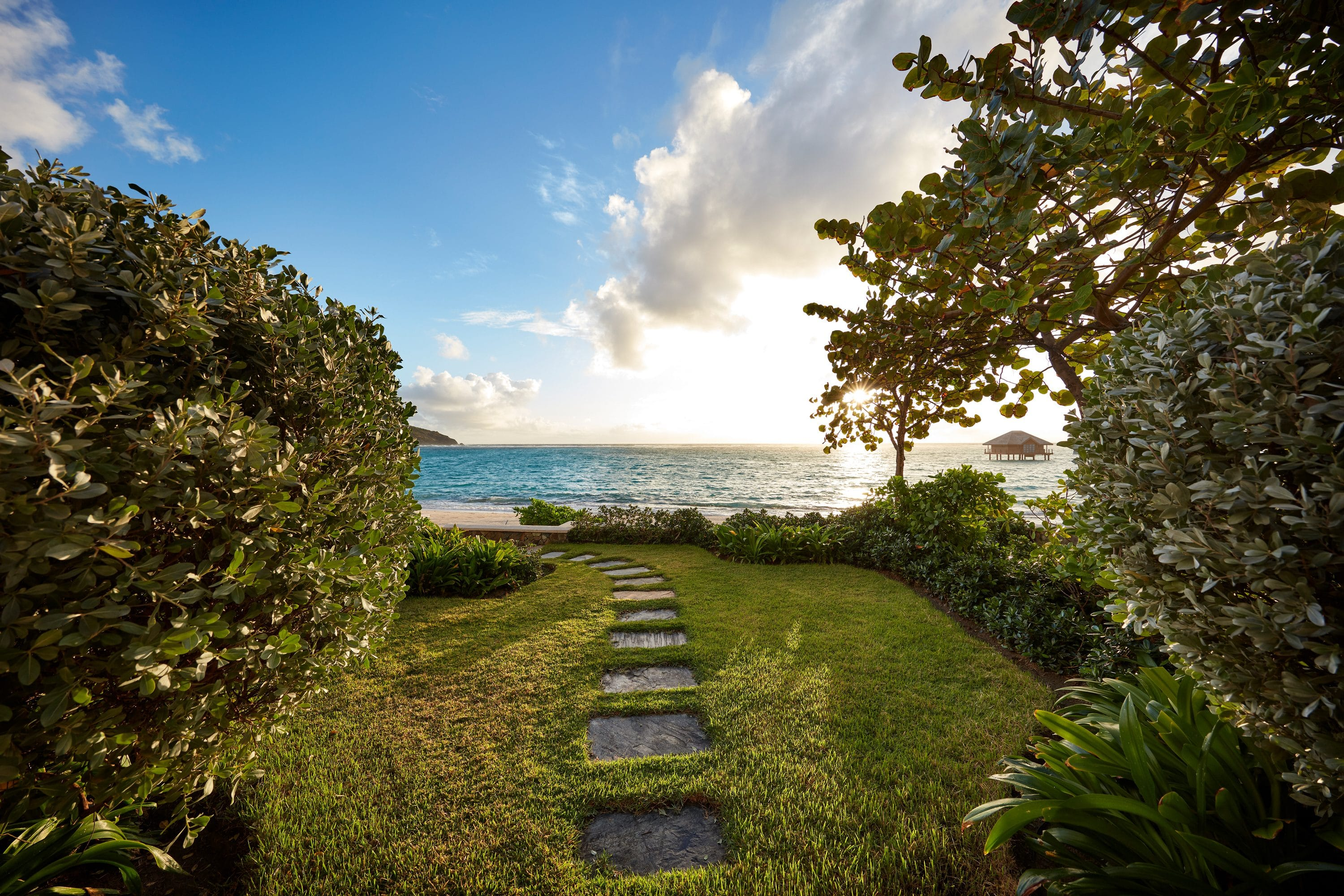 Path leads to ocean through garden