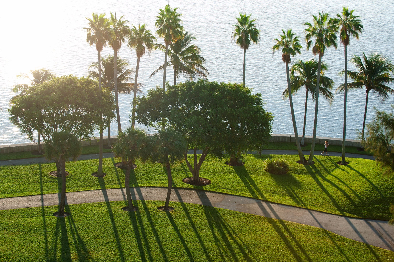 The jogging path at Mandarin Oriental, Miami