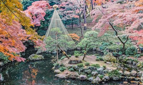 Tokyo's finest Japanese gardens