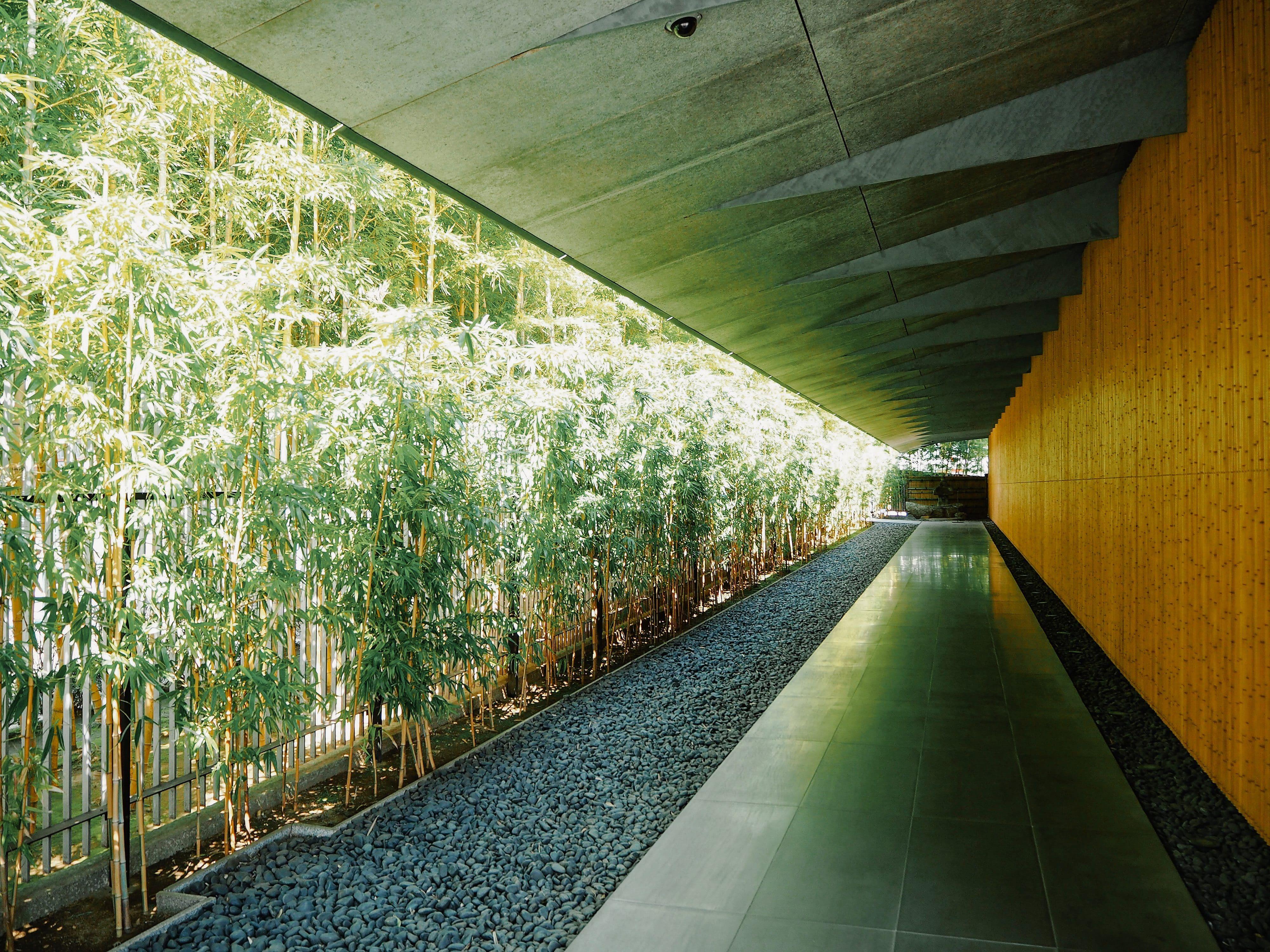 Tokyo S Finest Japanese Gardens