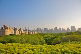 Central Park and New York skyline