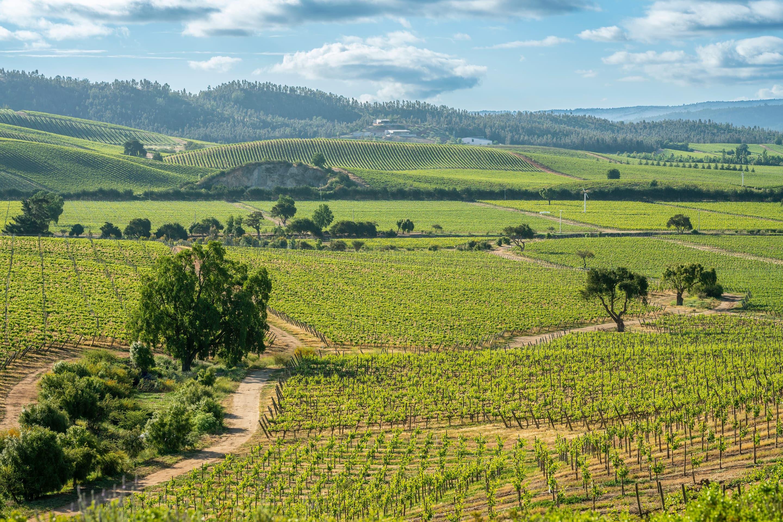 Santiago countryside
