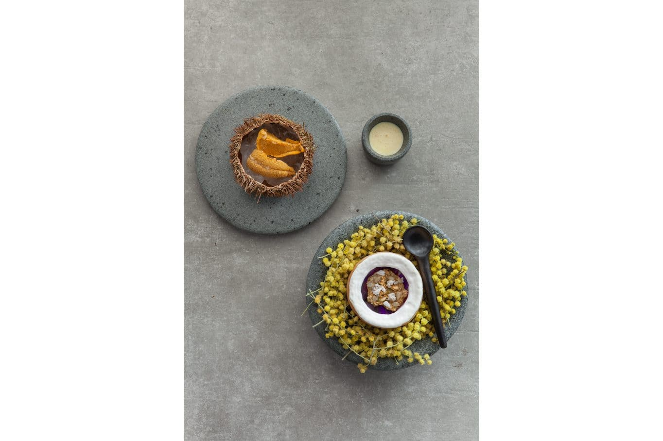 Artfully plated dishes at Borago restaurant, Santiago