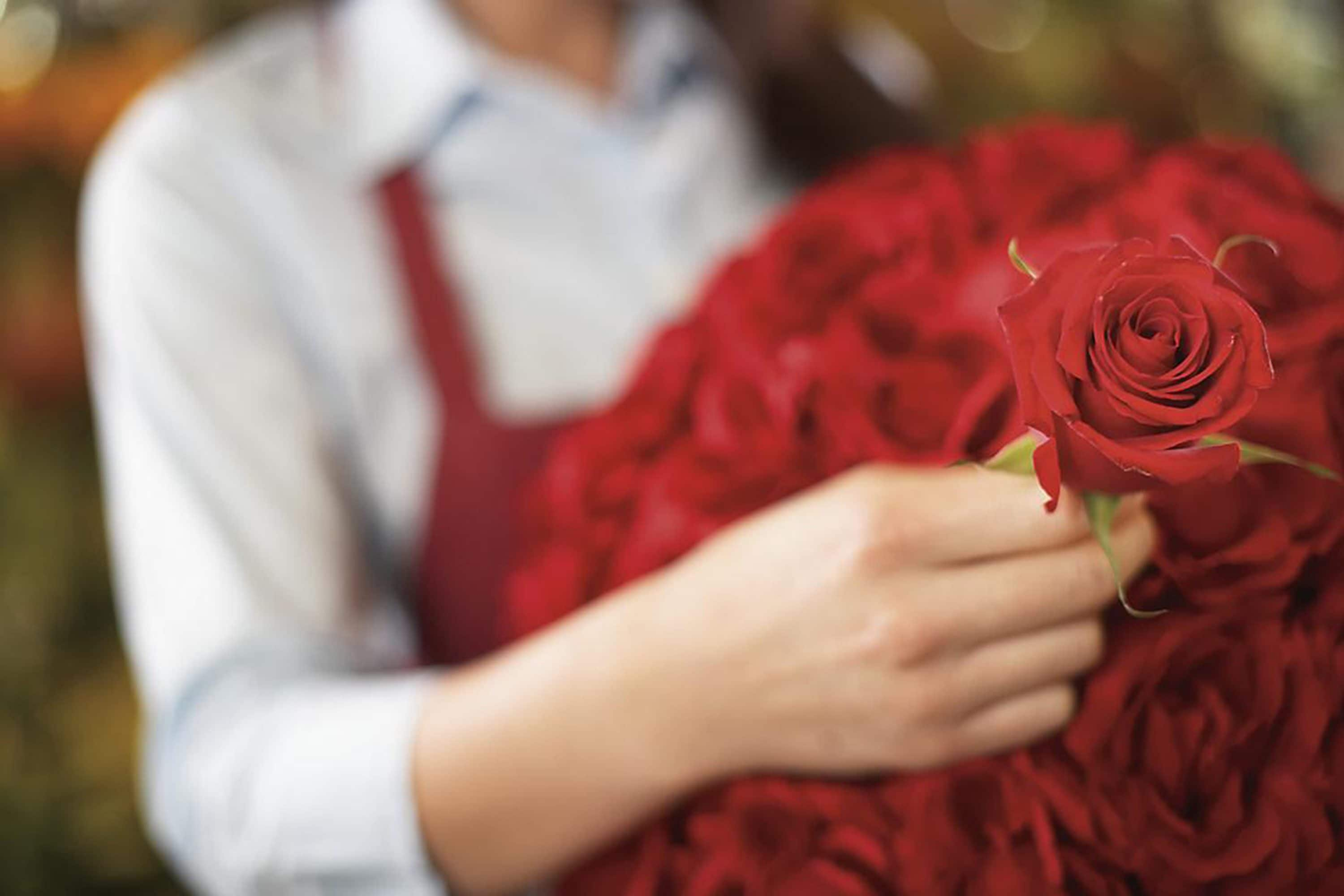 Florist prepares a bouquet of red roses