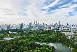 The green trees of Benjakitti Park in Bangkok