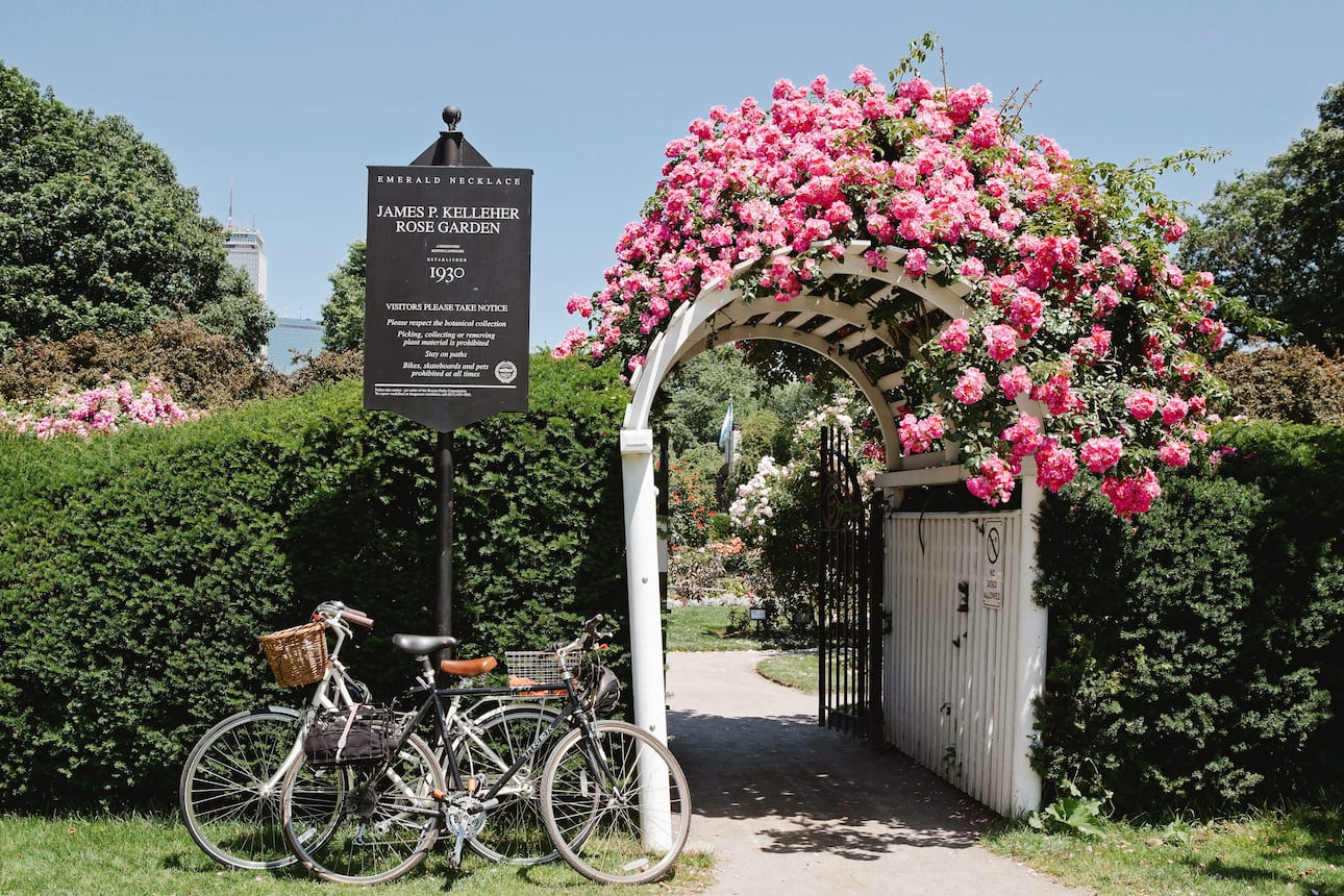 Arched trellis entrance to James P Kelleher Rose Garden