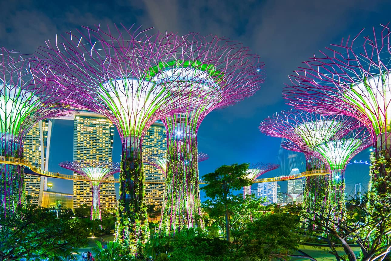 Multicoloured trees at Gardens by the Bay