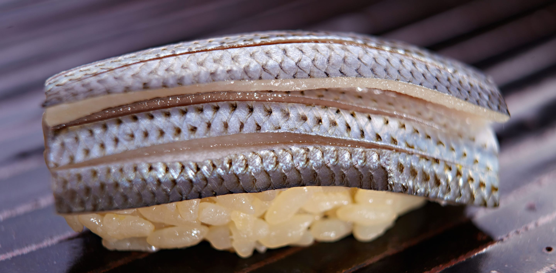 japanese cuisine, sushi, mackarel