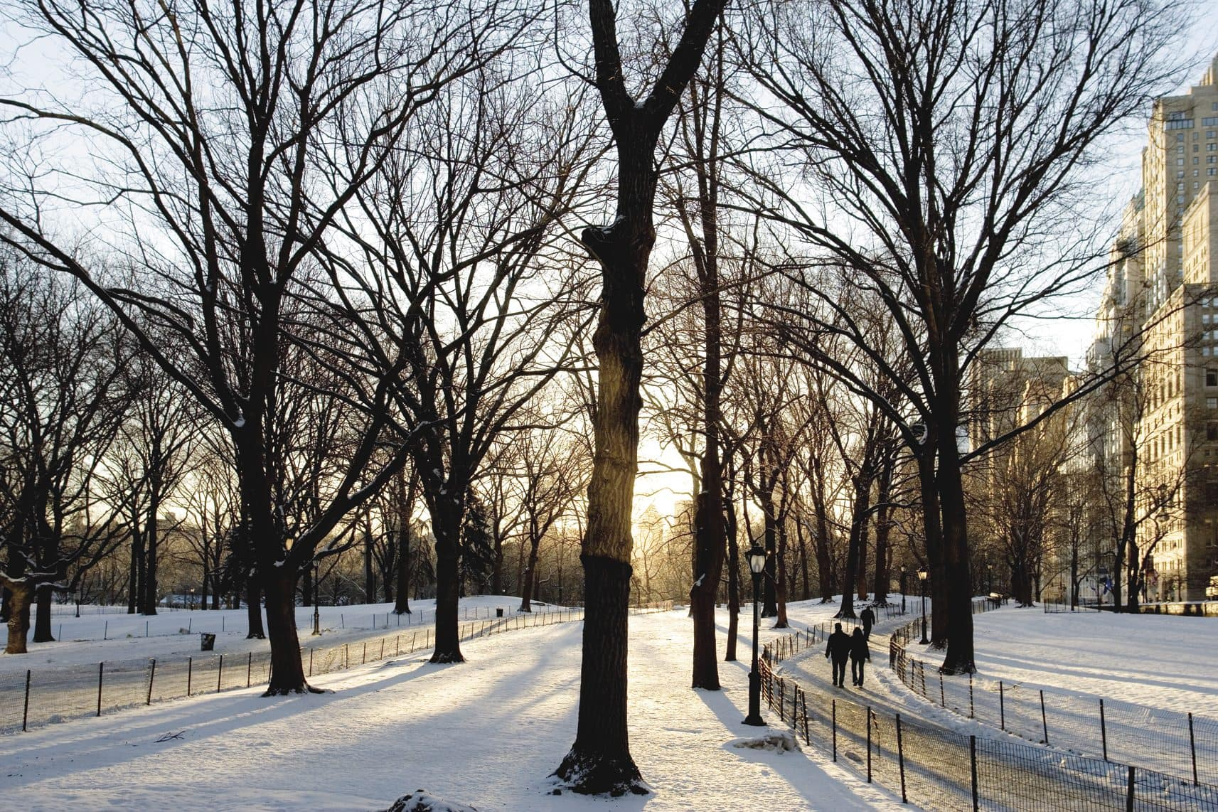 A snowy Central Park in New York with footprints and winter sun