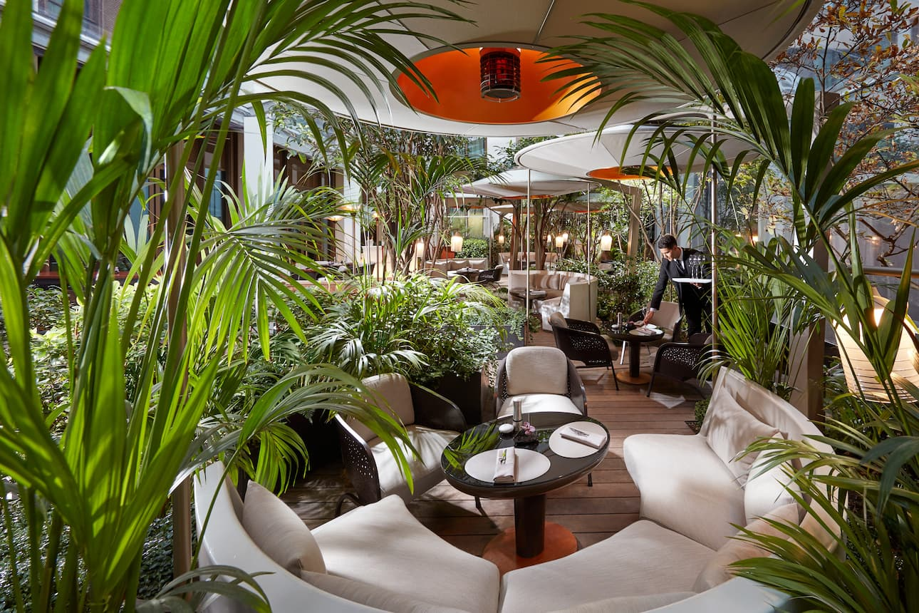 outdoor dining at camelia