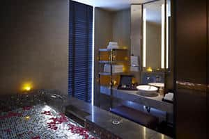 Spa Couples' Suite - Vitality Pool